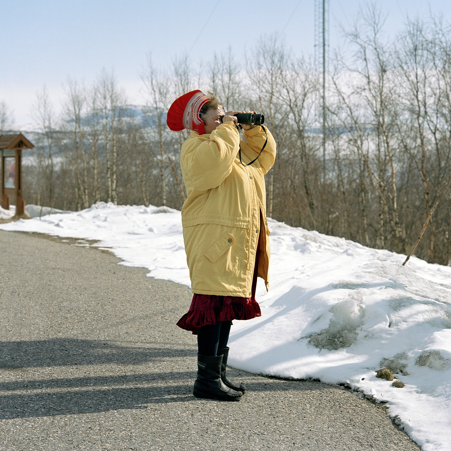 Looking for the lost reindeer, 2005