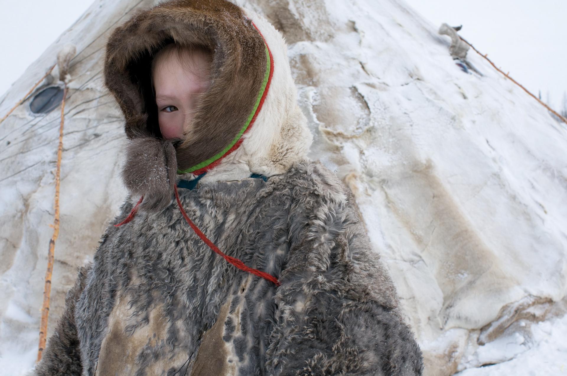 Sentinelles de l'Arctique