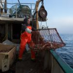 Snow crab fishing